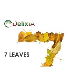 Delixia Aroma Tabacco Organico 7 Foglie