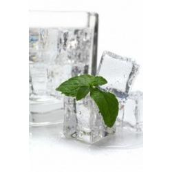T-Svapo - Aroma Menta ICE 10ml